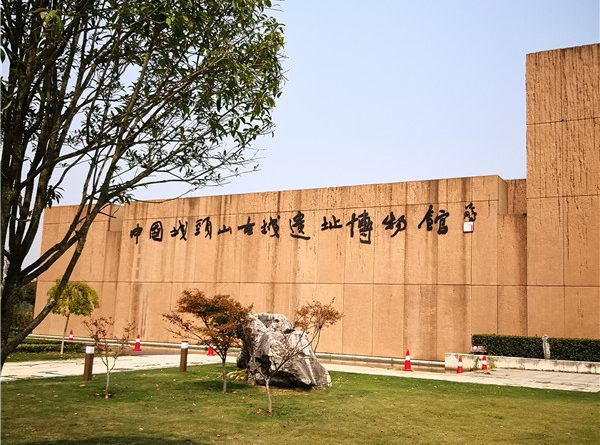城头山古文化遗址公园一日游